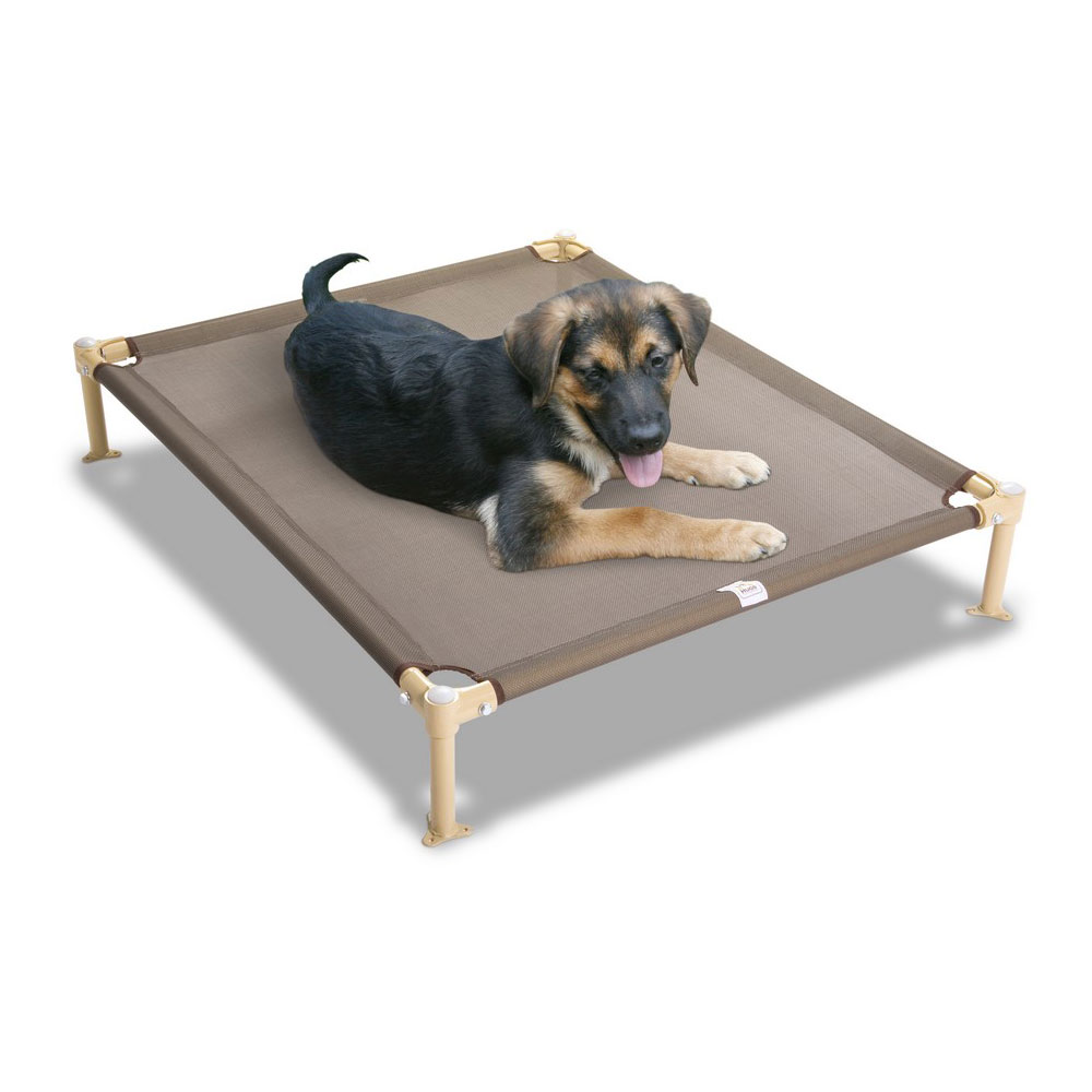 Puppy Beds For Sale Toilet Training Age Orthopedic Dog